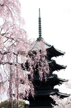 京東屋 ゆう遊紀行 東寺